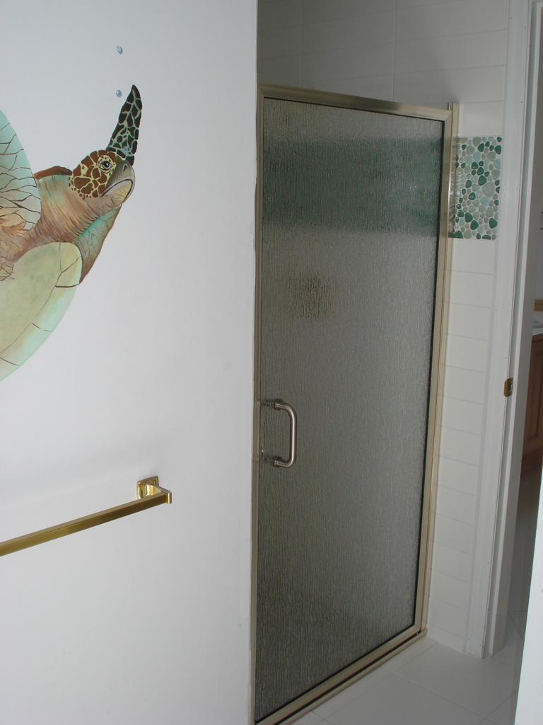 Framed glass shower door for Solid glass shower doors